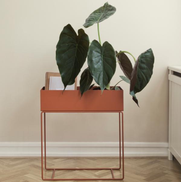 ferm living plant box hjem lys. Black Bedroom Furniture Sets. Home Design Ideas